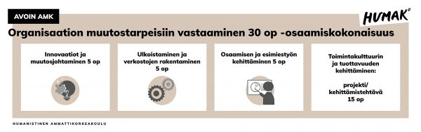 Organisaation muutostarpeisiin vastaaminen 30 opintopisteen osaamiskokonaisuuteen kuuluvat opintojaksot Innovaatiot ja muutosjohtaminen 5 opintopistettä,Ulkoistaminen ja verkostojen rakentaminen 5 opintopistettä,Osaamisen ja esimiestyön kehittäminen 5 opintopistettä ja Toimintakulttuurin ja tuottavuuden kehittäminen: projekti tai kehittämistehtävä 15 opintopistettä.